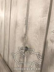 WHITE DISTRESSED DOOR 4