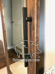 SOLID STAIN MIRROR DOOR